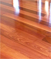 Tasman Floor Finishing Services