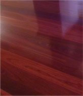 Tasman Floor Staining Services